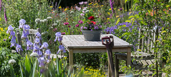 Table in garden with flowers