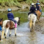 Pony trekking in the Brecon Beacons
